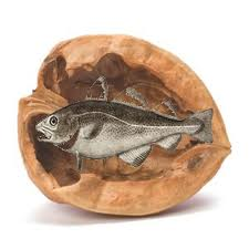 Fish in a Nutshell